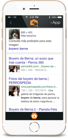 Diseño iOS, Diseño Android, Diseño UI, diseño de apps para móviles, search for images, pantallas app store